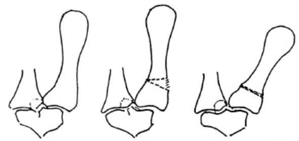 Basil Joint Arthritis Specialist