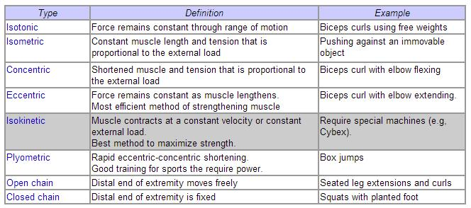 Isometric Contraction Sporting Example Exercise Scienc...