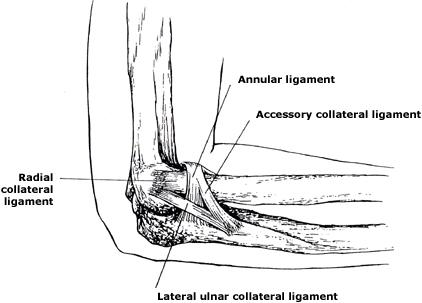 Terrible Triad Injury of Elbow - Trauma - Orthobullets