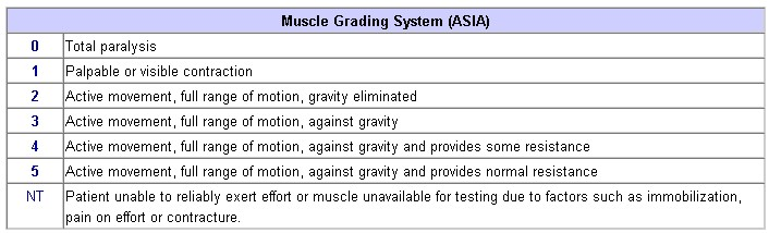 https://upload.orthobullets.com/topic/2001/images/muscle grading system.jpg