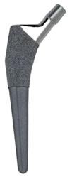 https://upload.orthobullets.com/topic/5033/images/cementless-femoral-stems-img-jisrf.jpg